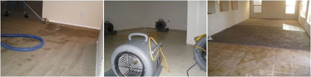 Water Restoration Higley, AZ that offers 24 hour Water extraction Service, Flood Restoration, Water Removal, Water Damage Service, Flooded Carpets in The Apachee Junction AZ Areas. Water Restoration Higley, AZ Water Extraction Higley, AZ  Flood Restoration Higley, AZ Flooded Carpets Higley, AZ Water Damage Service, Higley, AZ.